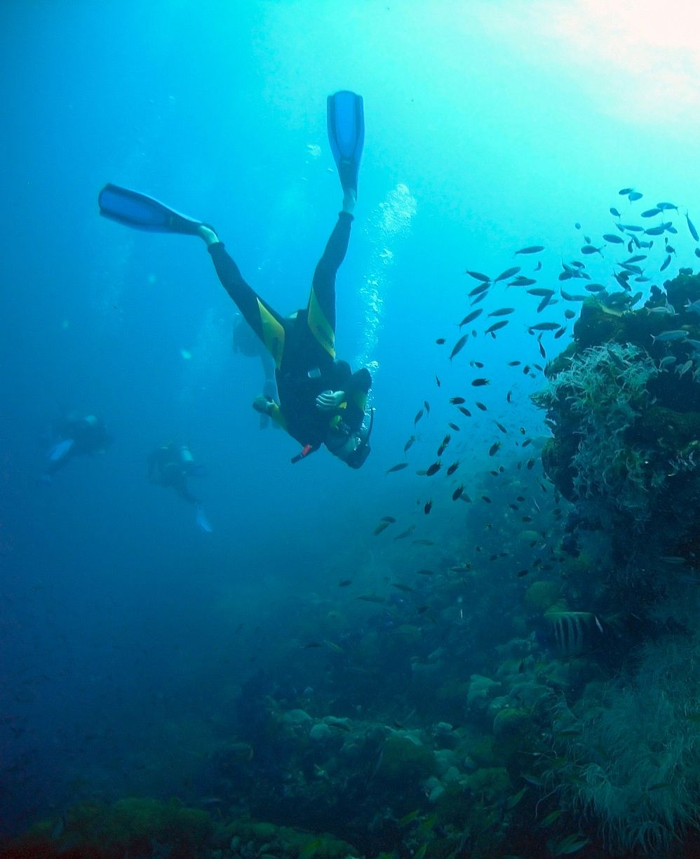 Red Sea vacations are all about relaxation at the beach. Scuba diving is a highly recommended experience >> http://www.egypttoursplus.com/category/travel-to-egypt/red-sea-holidays/