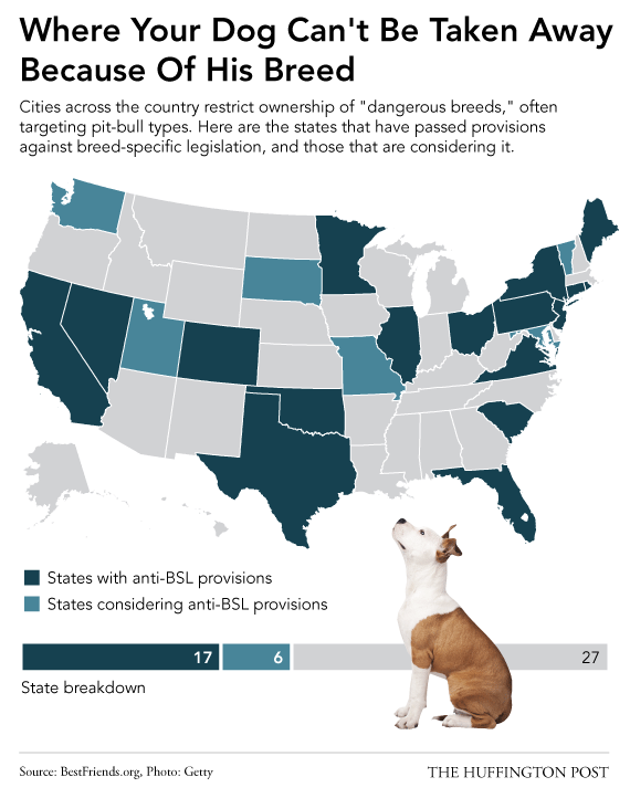 These States Won T Allow Your Dog To Be Seized Because Of His Breed Bully Breeds Pitbull Dog Breed Specific Legislation