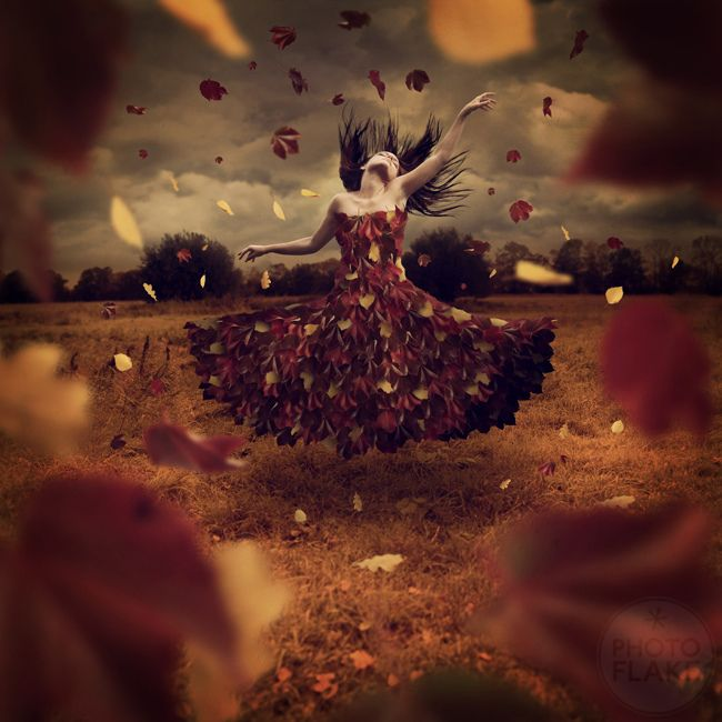 dance of leaves by photoflake on deviantART