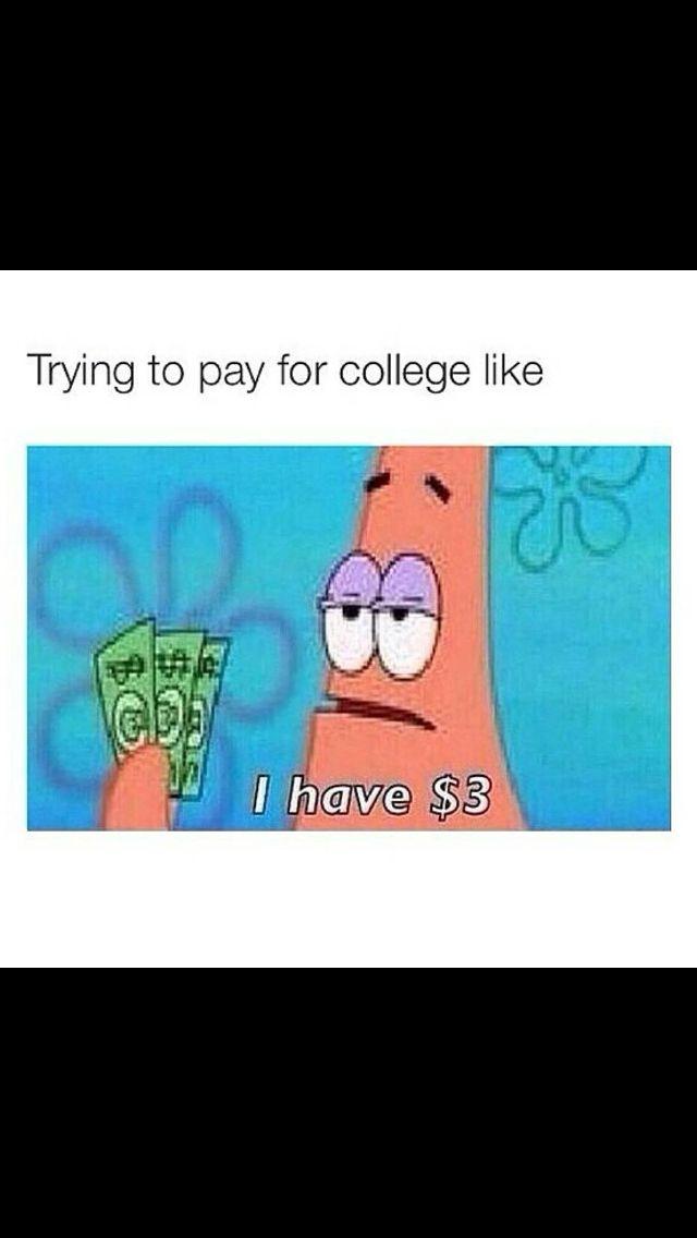Paying For College Funny Spongebob Memes Funny Memes Spongebob Memes