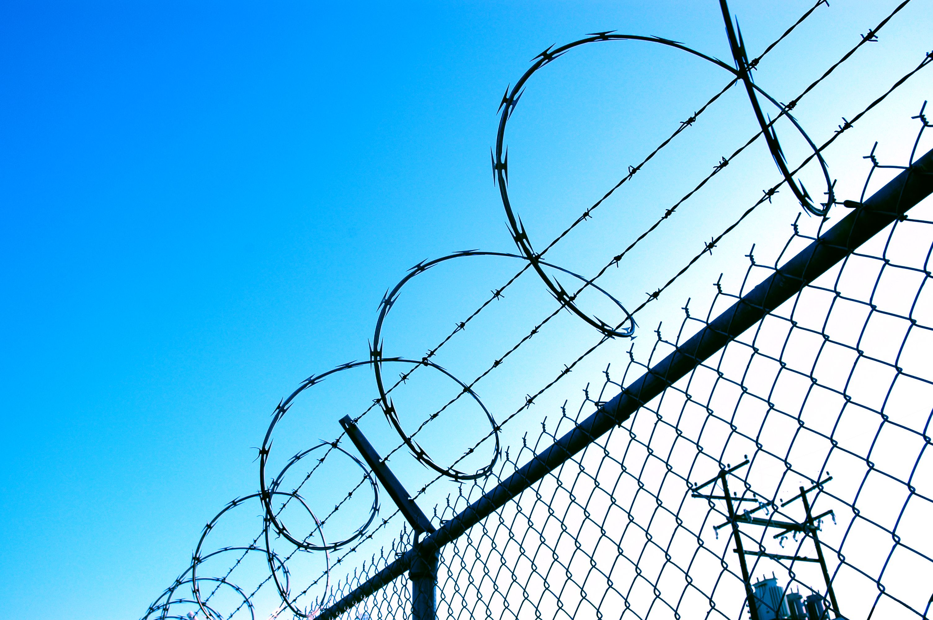 barbed wire - Google Search | Life Without Parole | Pinterest | Door ...