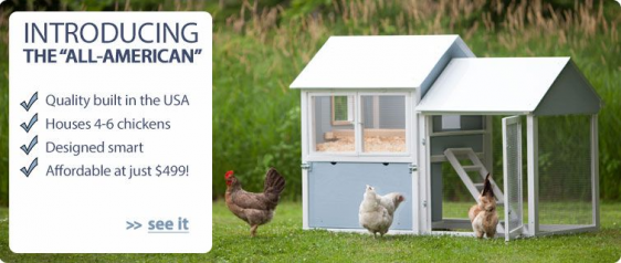 Website to check out. Chicken coop plans Pick the right ...