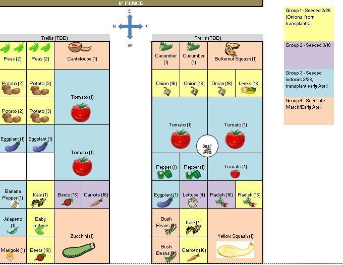 Companion Planting Vegetable Garden Layout – Garden Companion Planting