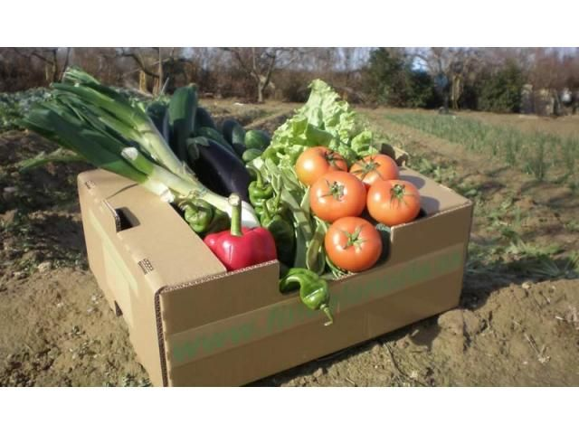 Cestas De Verdura Ecologica De Toledo Food Vegetables Tomato