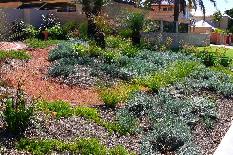 Waterwise Verge Garden In Perth