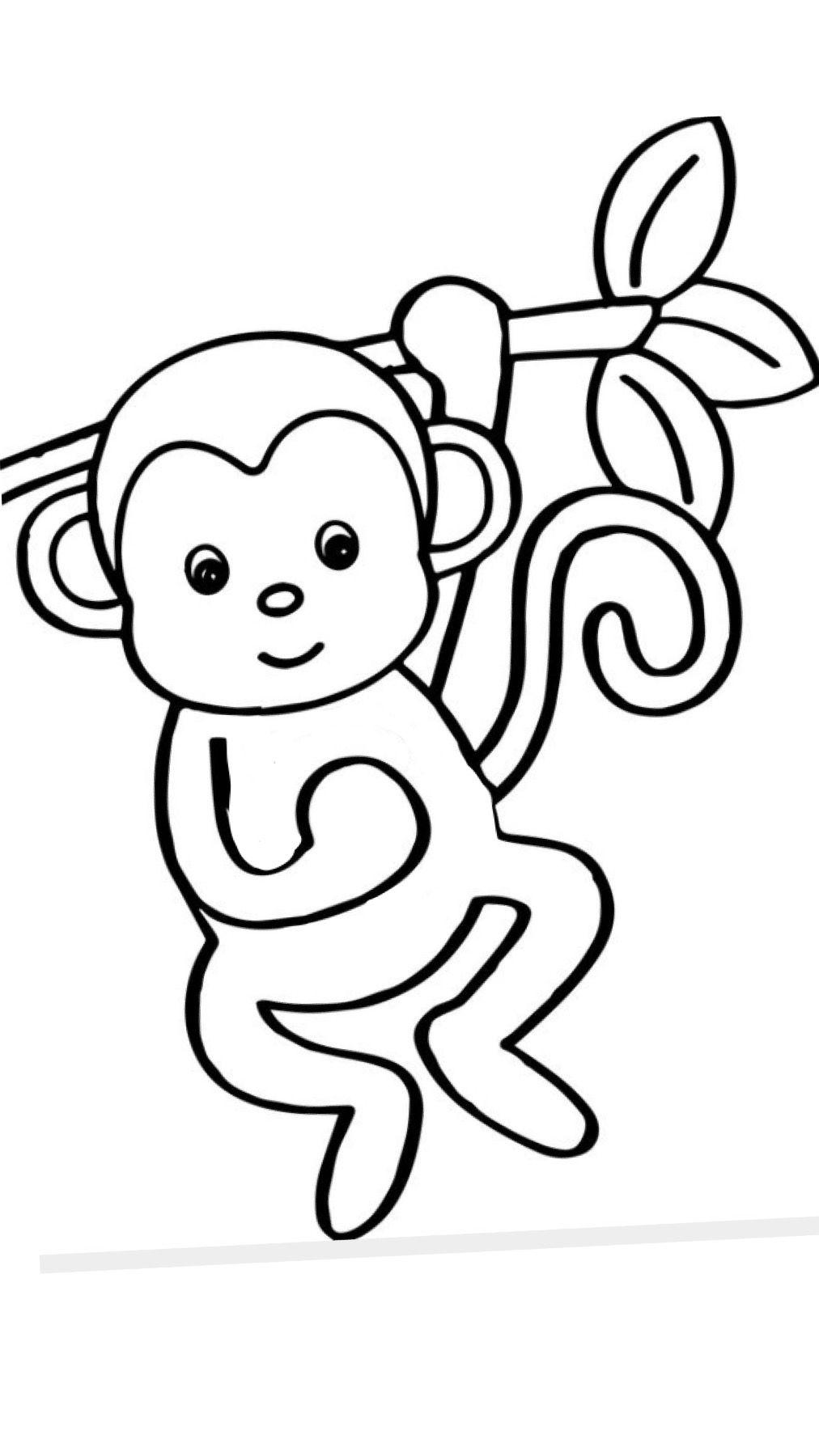 Pin On Monkeys