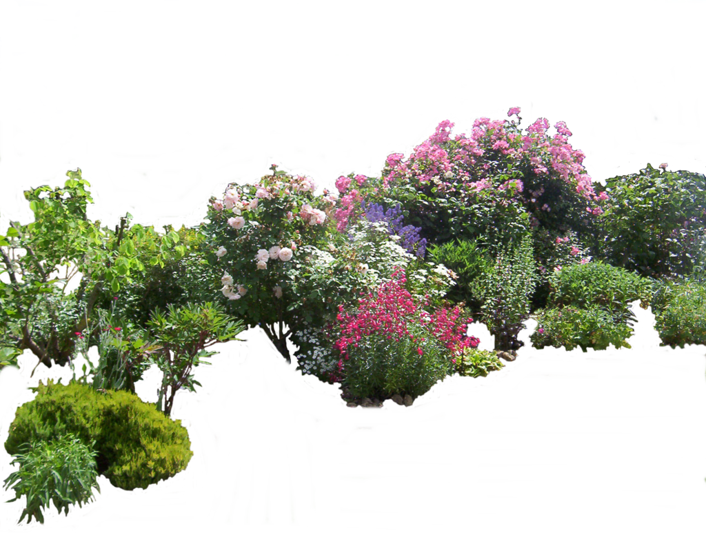 Top view plants 02 2d plant entourage for architecture - Architecture Visualization Flowered Garden Png 03 By Montvalentstock On Deviantart