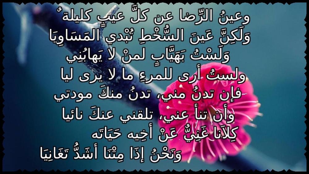 ابيات للامام الشافعي Arabic Calligraphy Just Me