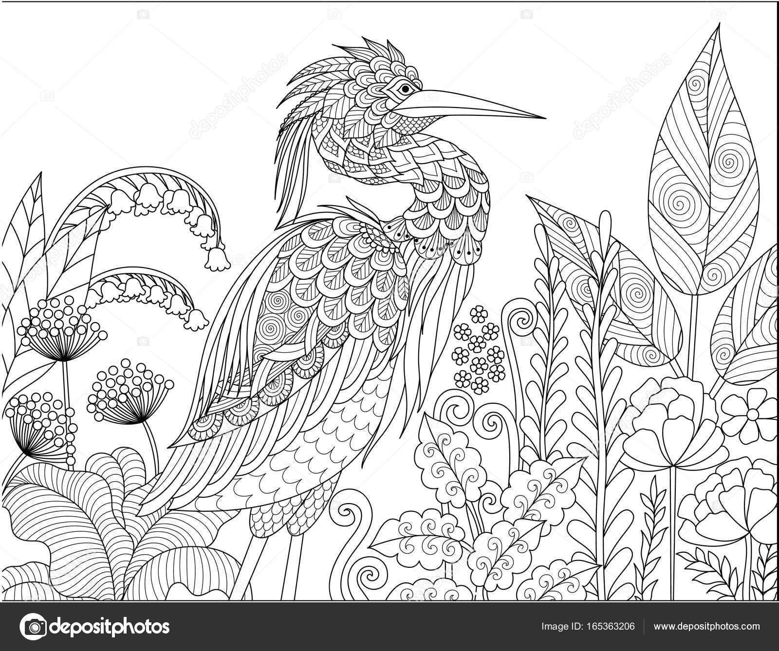 Descargar - Pájaro gris Garza en el bosque para adulto para colorear ...