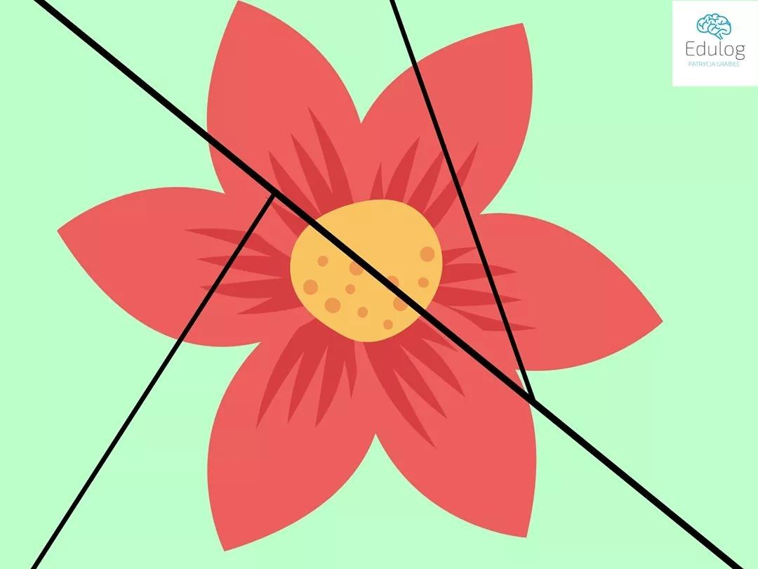 Pin By Patrycja Jaworska On Karty Pracy Przedszkole In 2020 Kwiaty Przedszkole Puzzle