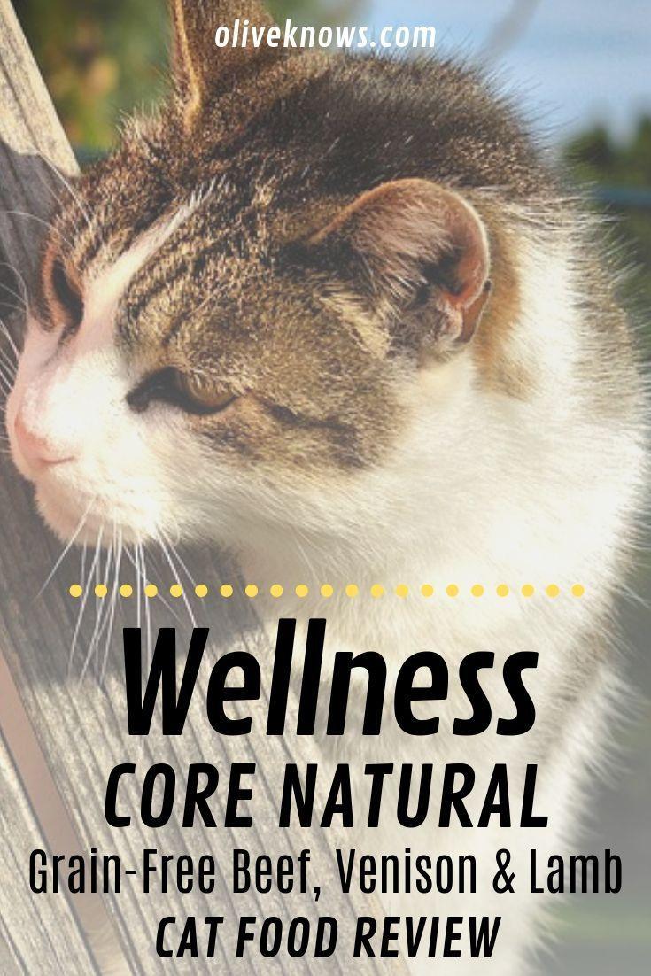 Wellness CORE Natural GrainFree Beef, Venison & Lamb