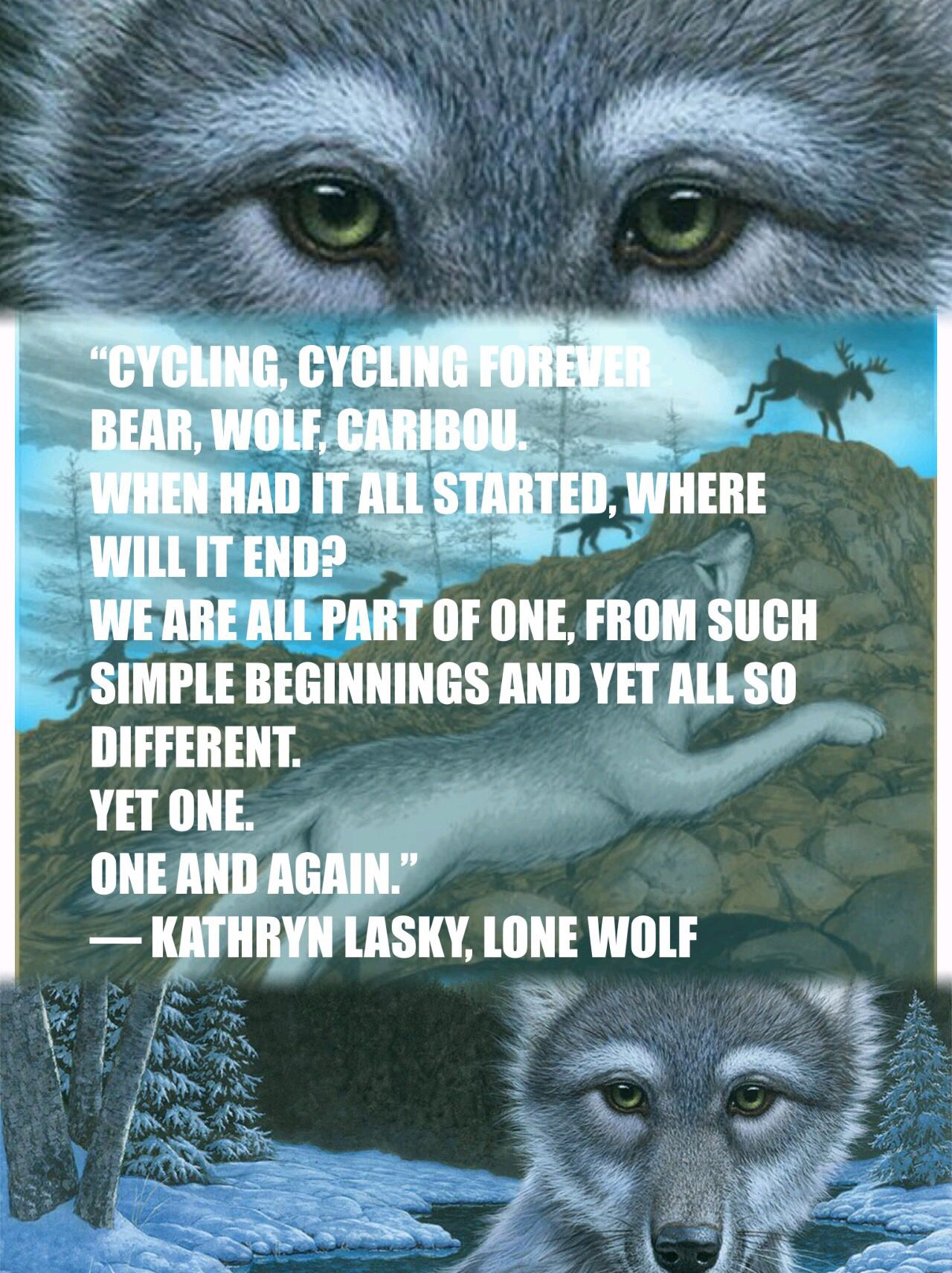 Wolves Of The Beyond Edit By Sophie Wright Wolf Animal Quotes Cool Books