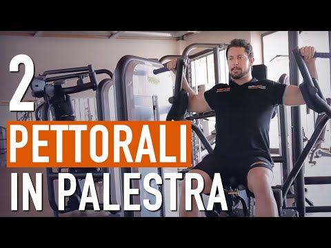 Come allenare i PETTORALI in PALESTRA correttamente / BodyBuilding - YouTube