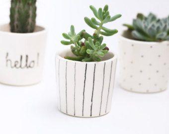 Vase Pour Plante Grasse Petit Cache Pot Noir Et Blanc
