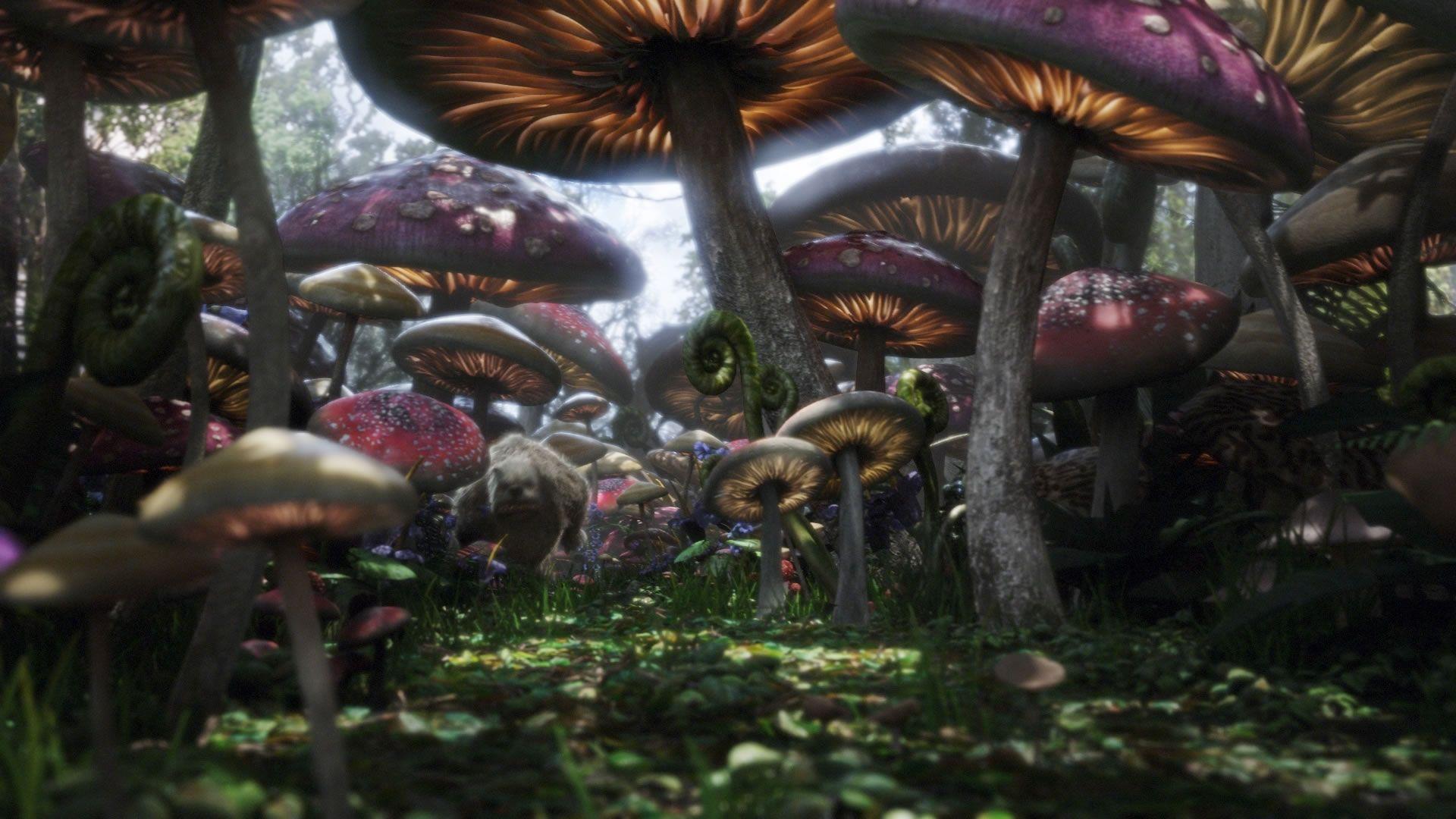 Alice In Wonderland Alice In Wonderland Movie Hd Wallpapers And