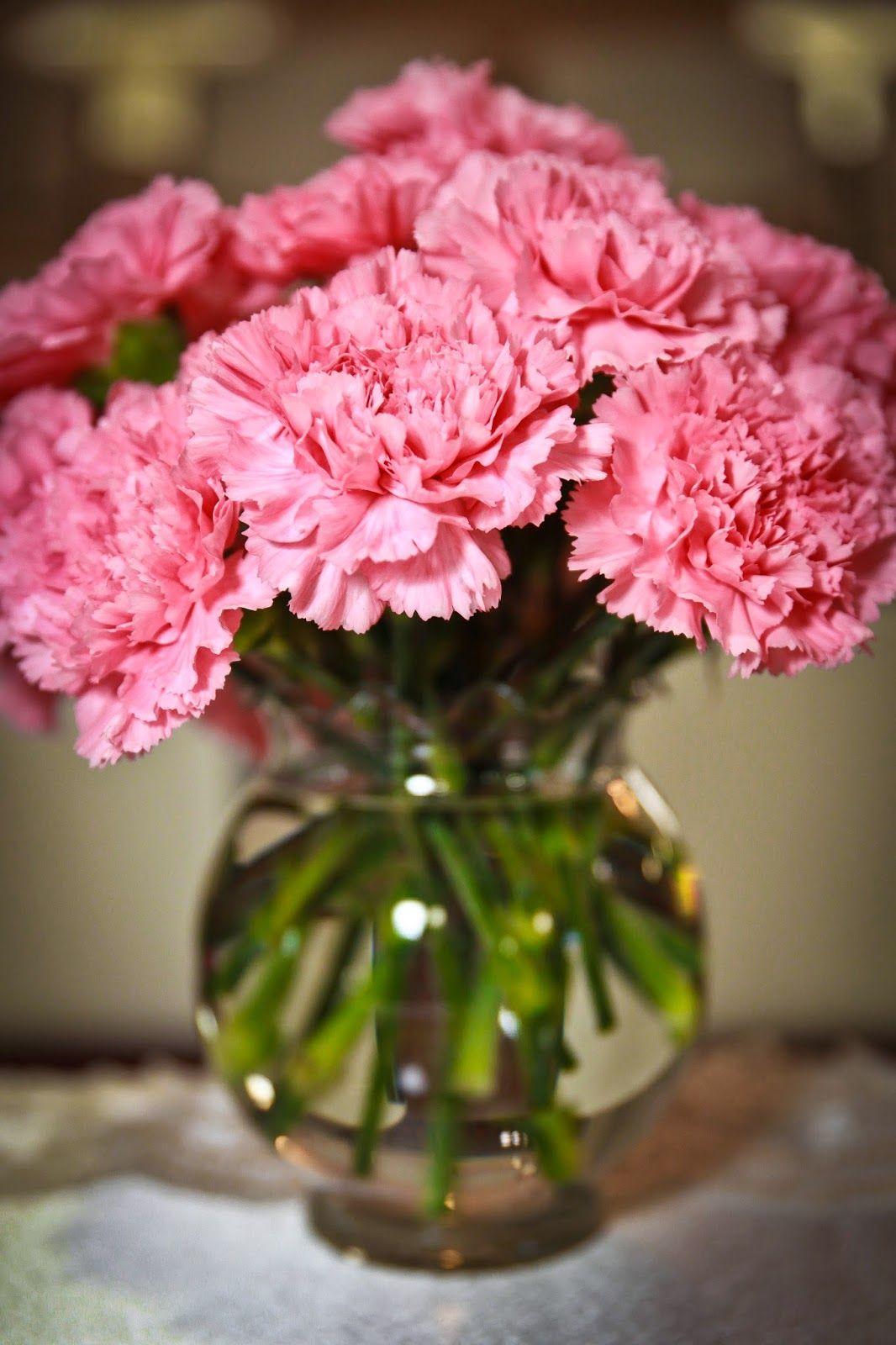 Flowers from Sam's Club for wedding Diy wedding flowers
