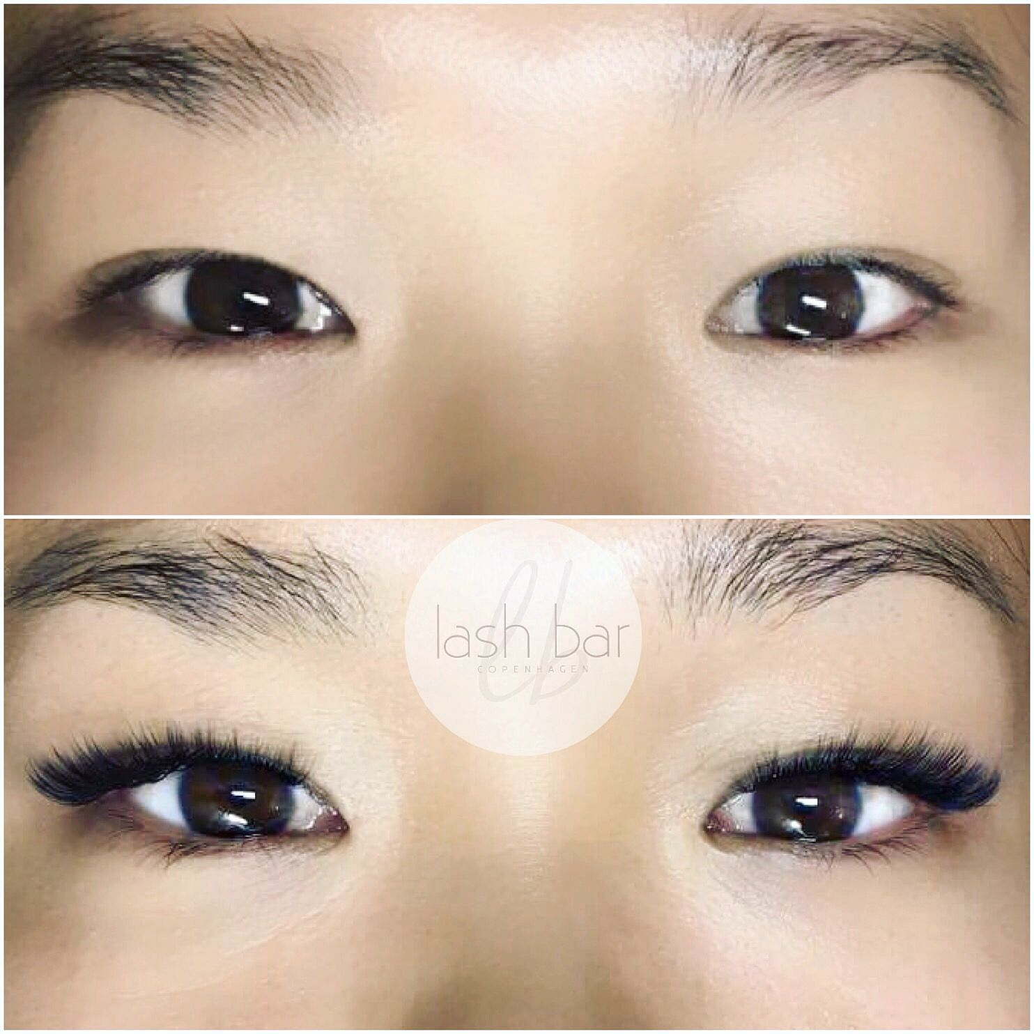 Asian eyes & volume lashes at Lash Bar Copenhagen | Lashes ...