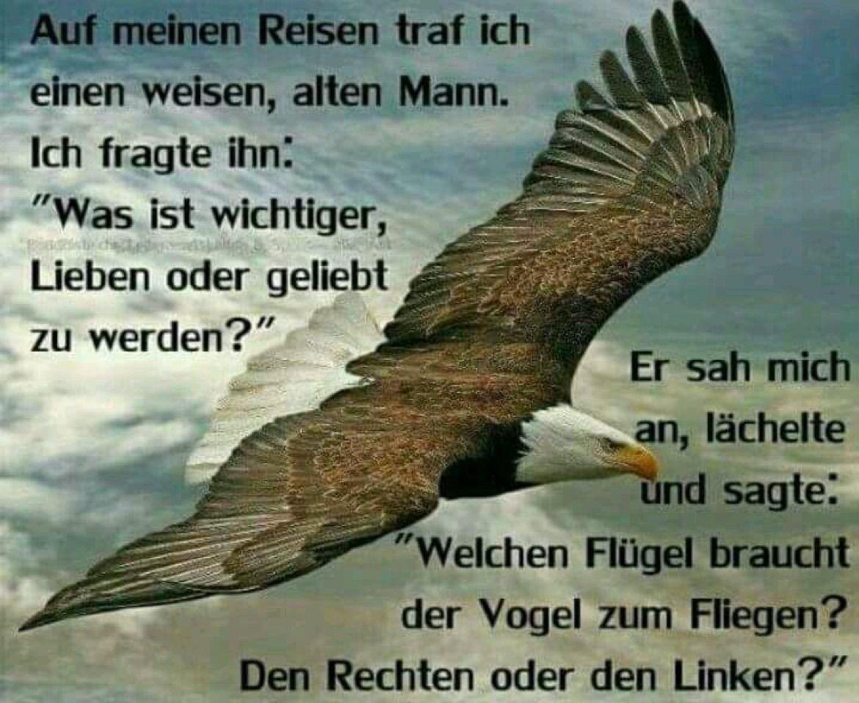 Adler Sprüche