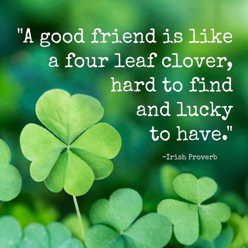 "A Good Friend Quote: ""A Good Friend Is Like A Four Leaf Clover, Hard To Find"