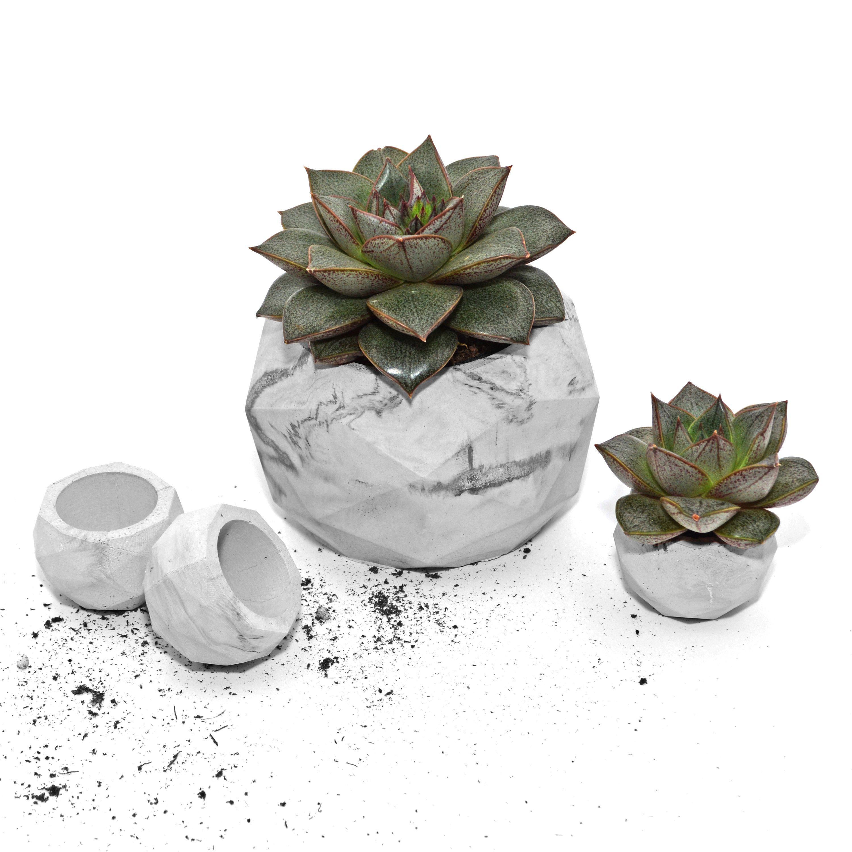 Concrete Planter With Drainage Hole Succulent Pot Set Small Geometric Planter Marble Vase Cement Sustainable Planter Cache Pot