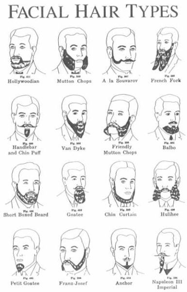 Some Facial Hair Types/Styles. Men hairstyle collection. Mustaches ...