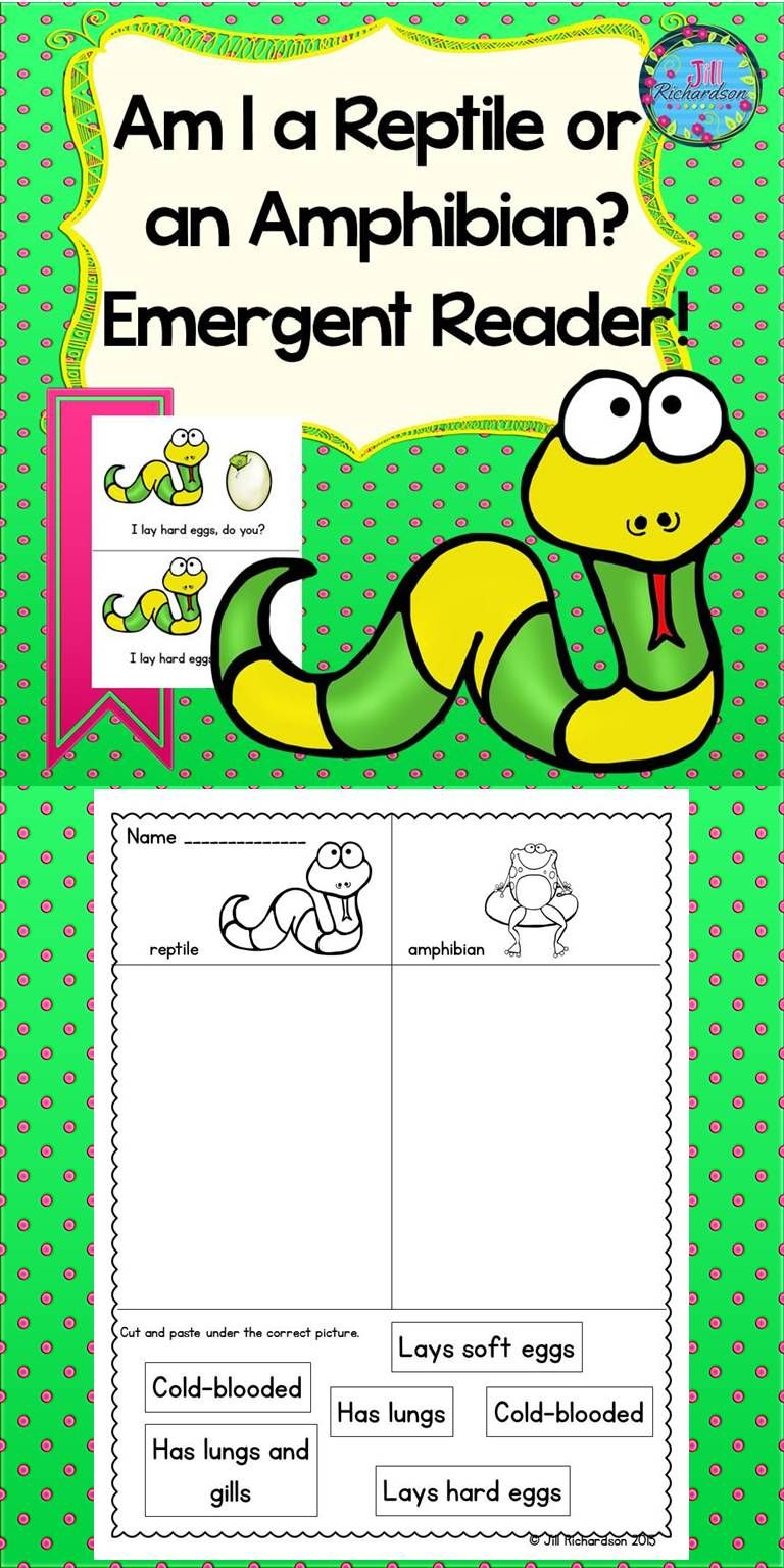 medium resolution of Teach your little ones the difference in a reptile or amphibian by reading  this cute emergent reader! Take a PR…   Emergent readers
