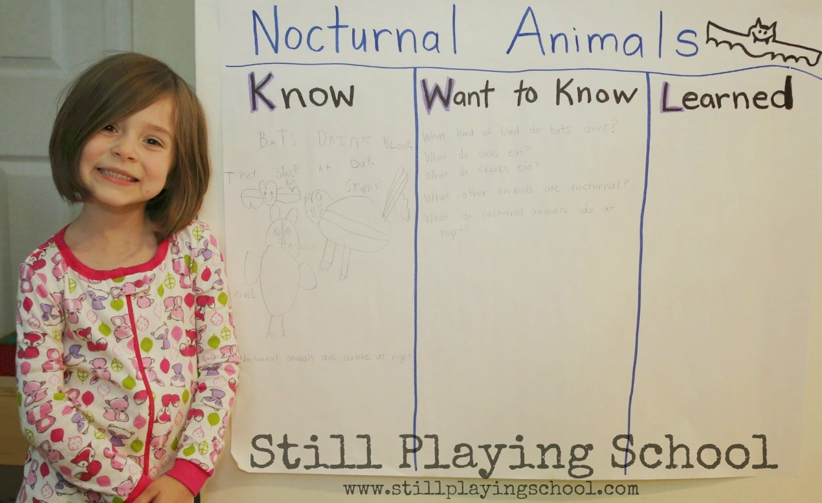 Nocturnal Animals Preschool Unit Using A Kwl Chart