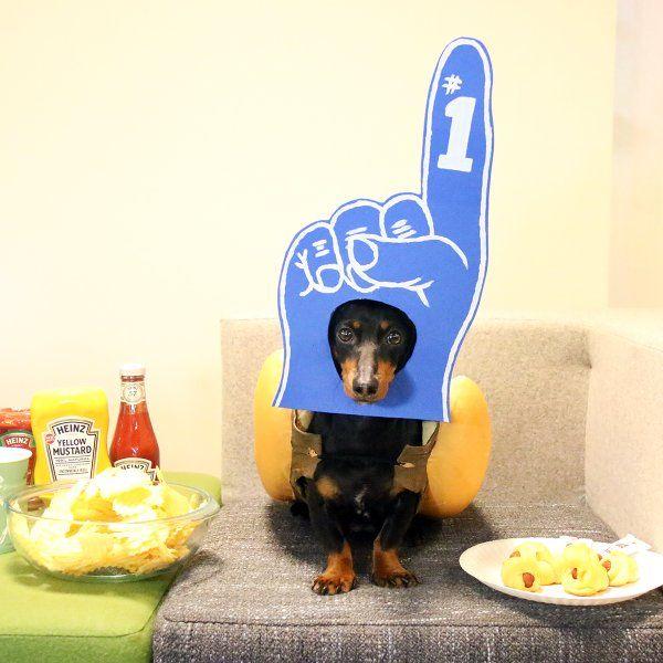 Embedded Image Permalink Weenie Dogs Heinz Ketchup Doggy