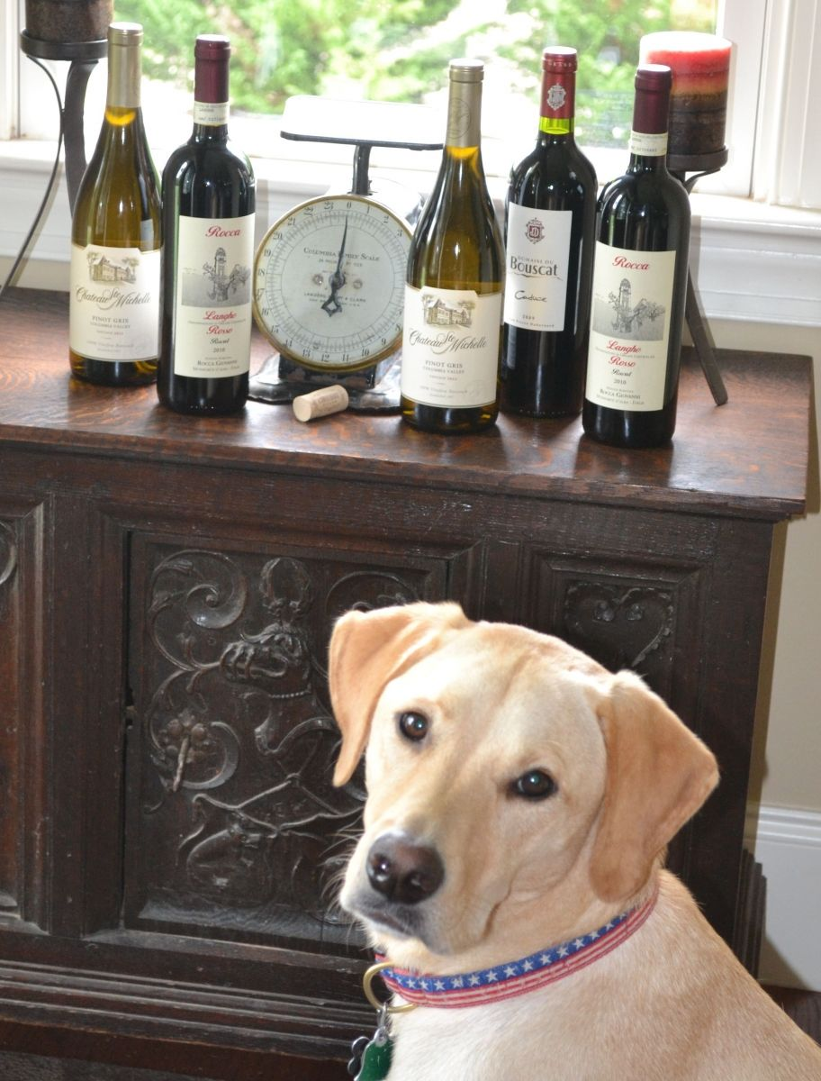 Sampling Wine Country's Finest with Fido America's Most