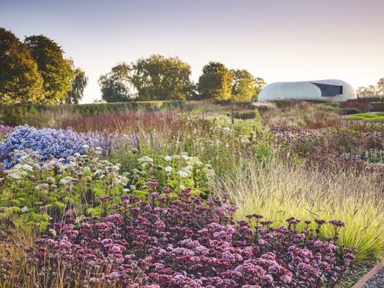 24 Key Plants From Piet Oudolf S Field At Hauser And Wirth Art Gallery And Garden In Somerset In 2020 Somerset Garden Cottage Garden Plants Plants