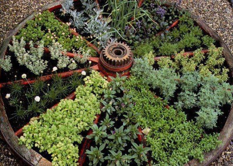 Container herb gardens and other herb garden ideas | Garden Ideas