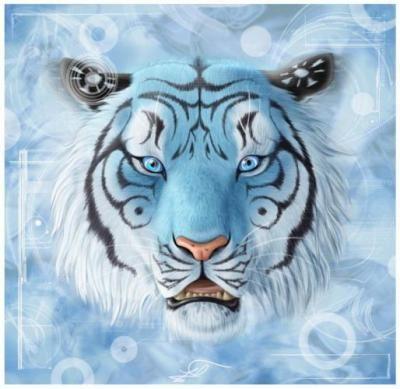 Tigre Blanc Fond D Ecran Recherche Google Tiger Art Tiger Wallpaper White Tiger