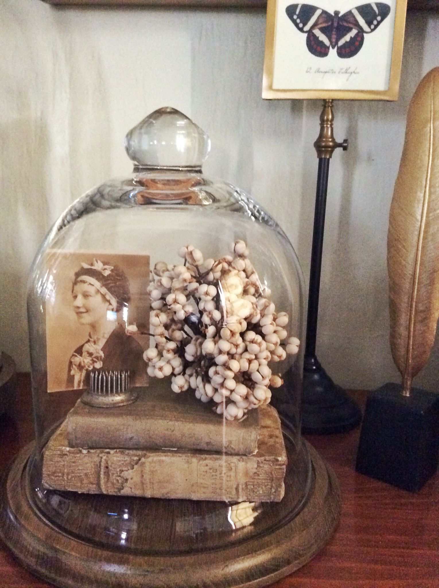 Home Decor Display Idea Cloche On Wooden Stand