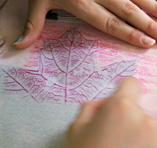 Leaf Rubbing Art Science Activity School Pinterest Parchment