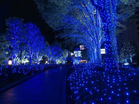 I wanna walk there | Beautiful | Pinterest