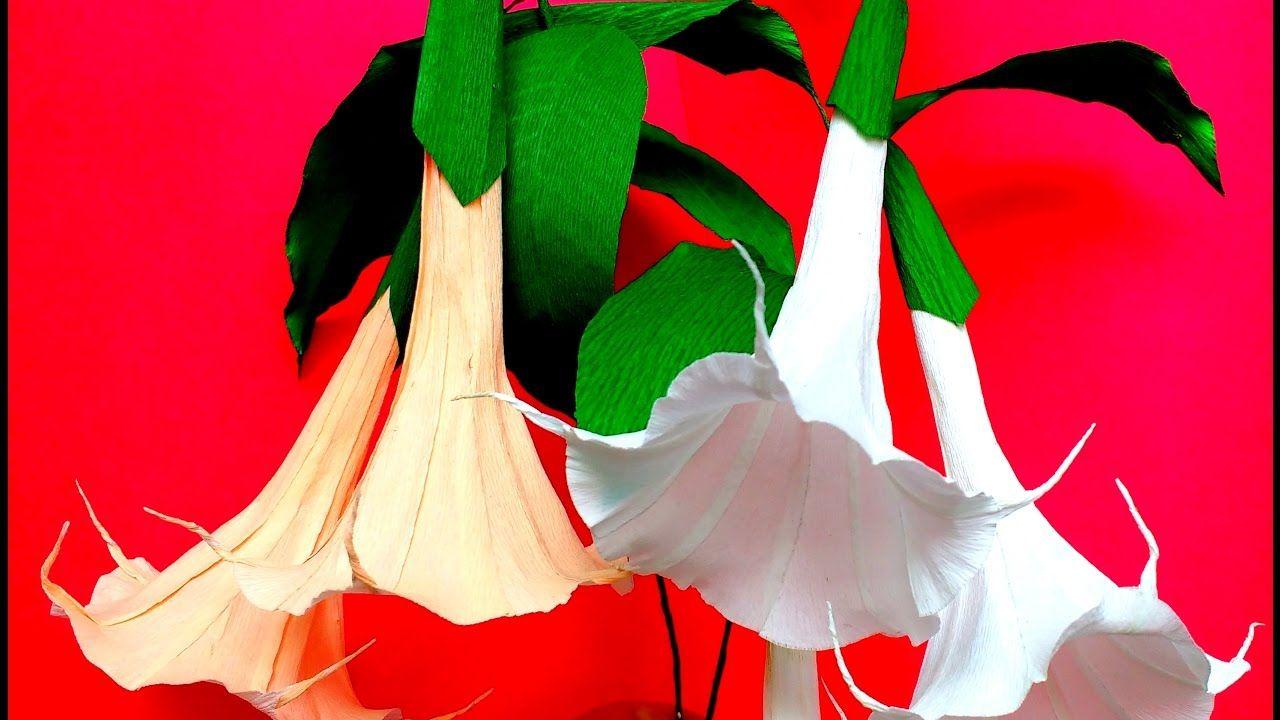 Paper Flowers Brugmansia Angel Trumpet Flower 100 Youtube