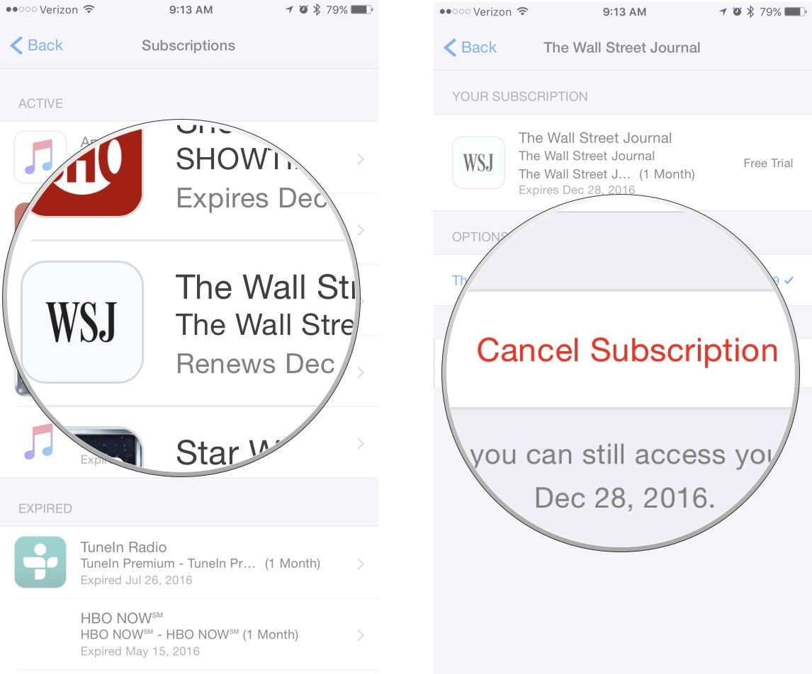 How To Cancel Subscriptions On Iphone With Images Cancel