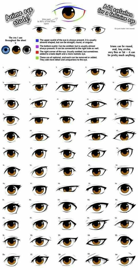 All Different Anime Eyeso