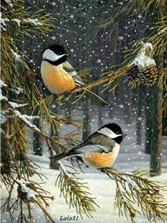 illustration noël ❄ oiseaux moineaux sur les sapins christmas winter snow bir…