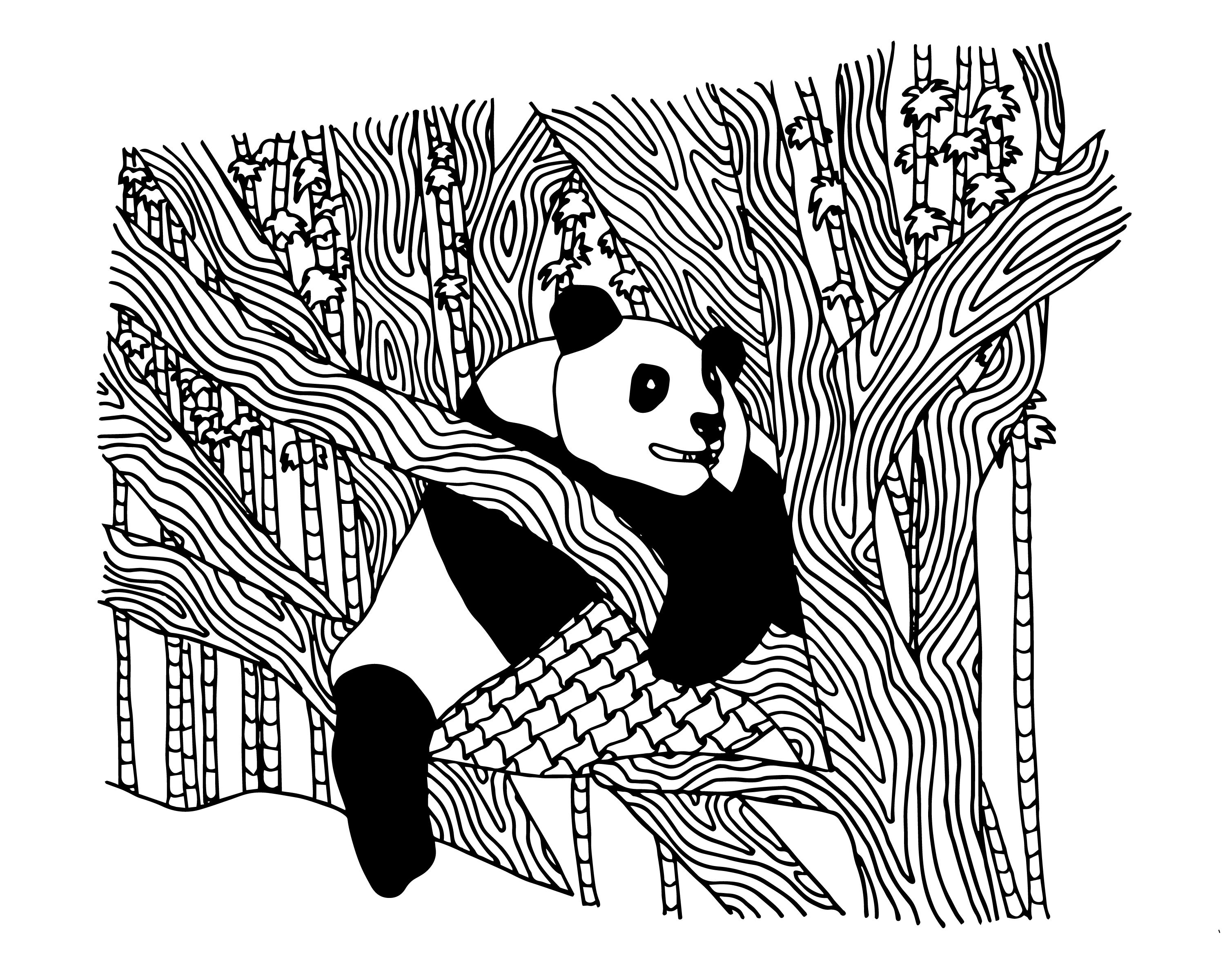 Panda Coloring Page for Adults  Panda coloring pages, Tree