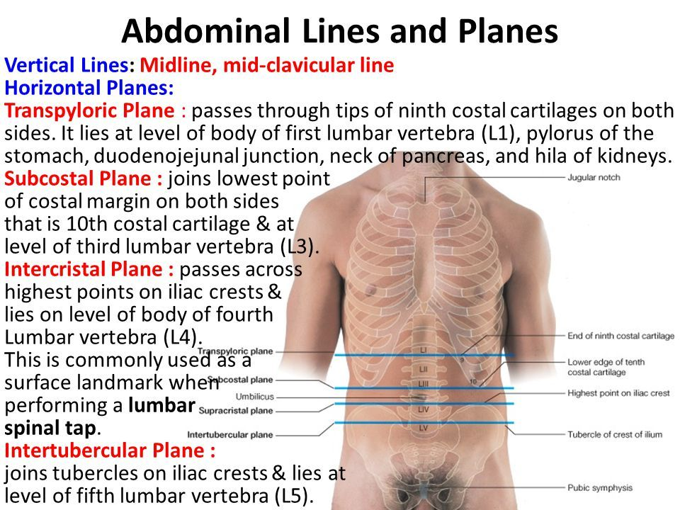 How To Cure Lower Abdominal Pain Naturally