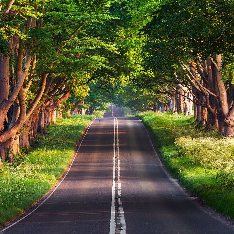4k Ipad Wallpaper 12 Widescreen Wallpaper Beautiful Roads Pineapple Photo