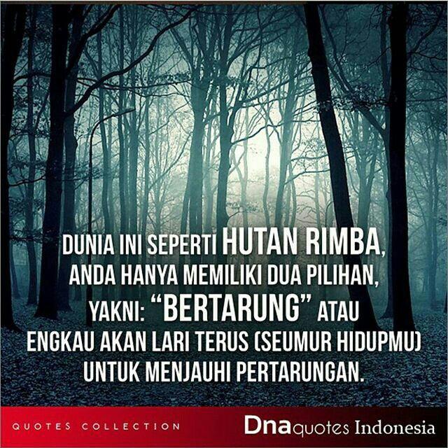 Dunia Ini Seperti Hutan Rimba Hutan Dunia Bijak