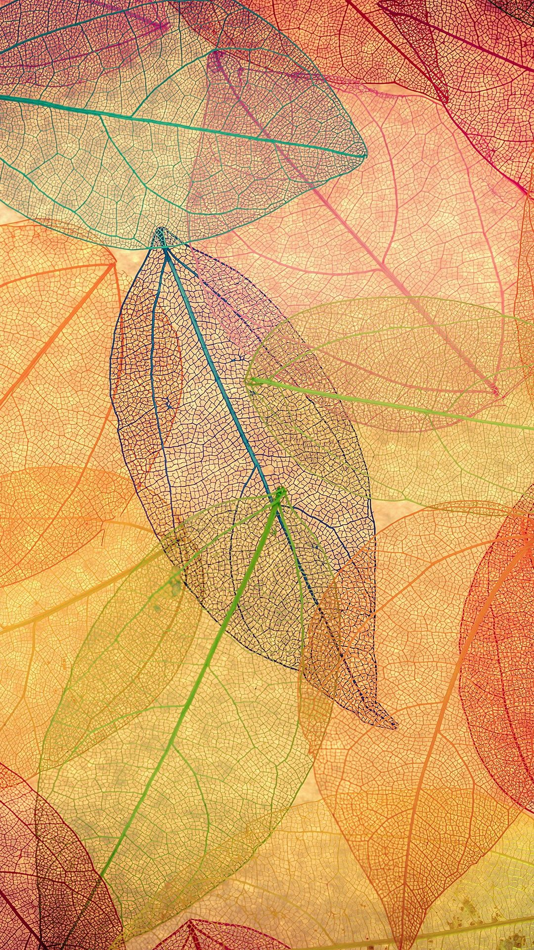 Rainbow Color Leaf Art Fall Nature Pattern IPhone 7 Wallpaper