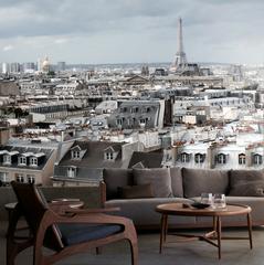 Paris Rooftops Mural