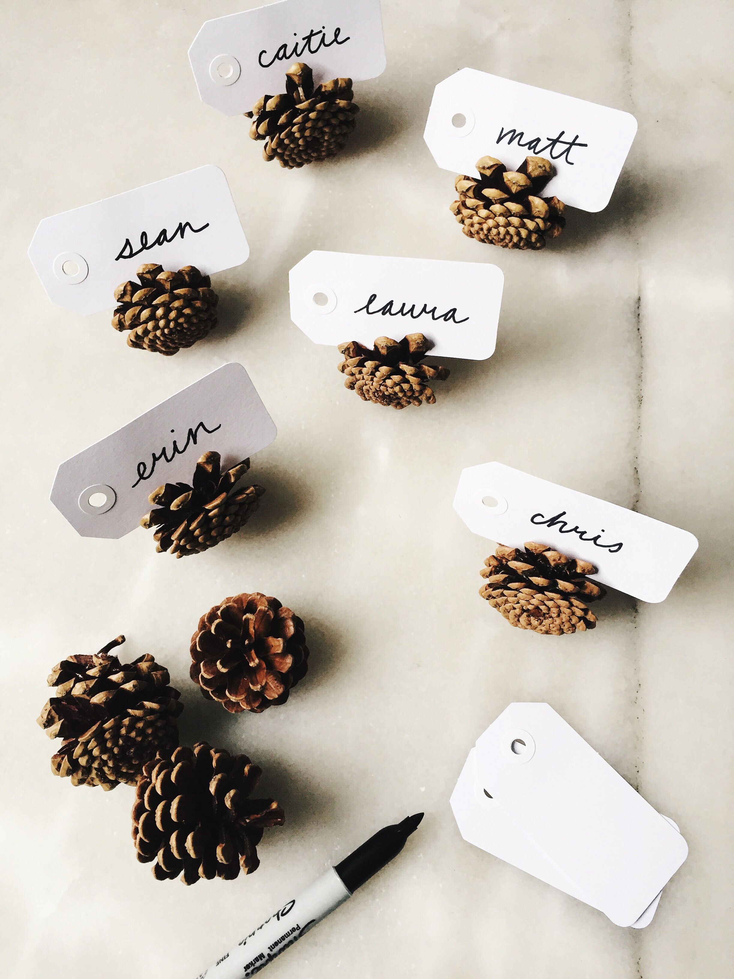 easy thanksgiving diy: parcel tag + pinecone place cards | Edna ...