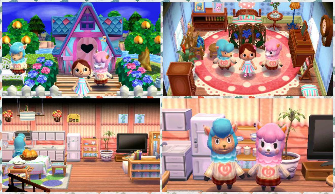 "Animal Crossing: Happy Home Designer- Cyrus- ""Cyrus And"