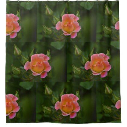Peachy Pink Rose Shower Curtain