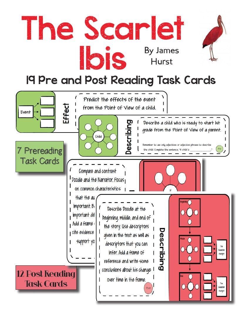 worksheet The Scarlet Ibis Worksheet use the beloved short story scarlet by james hurst to tori gorosave a middle school teachers journey