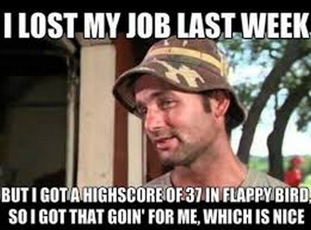 Funny Quit Job Meme : Dump a day of the funniest flappy bird memes u r funny